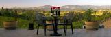 Everett Ridge Vineyards & Winery