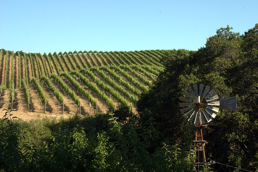 Mount Veeder Napa Valley California