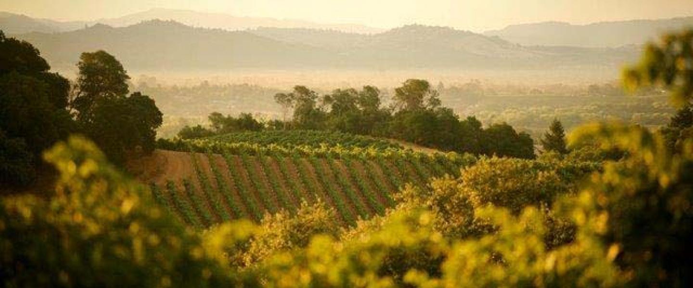 Sonoma California Wine Country