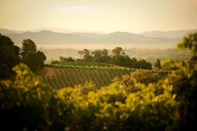 Sonoma California Wine Country