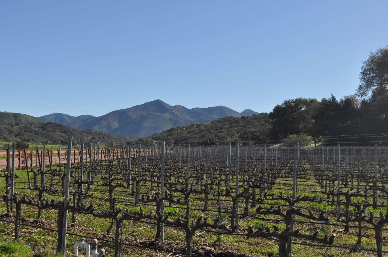 santa barbara wine country california