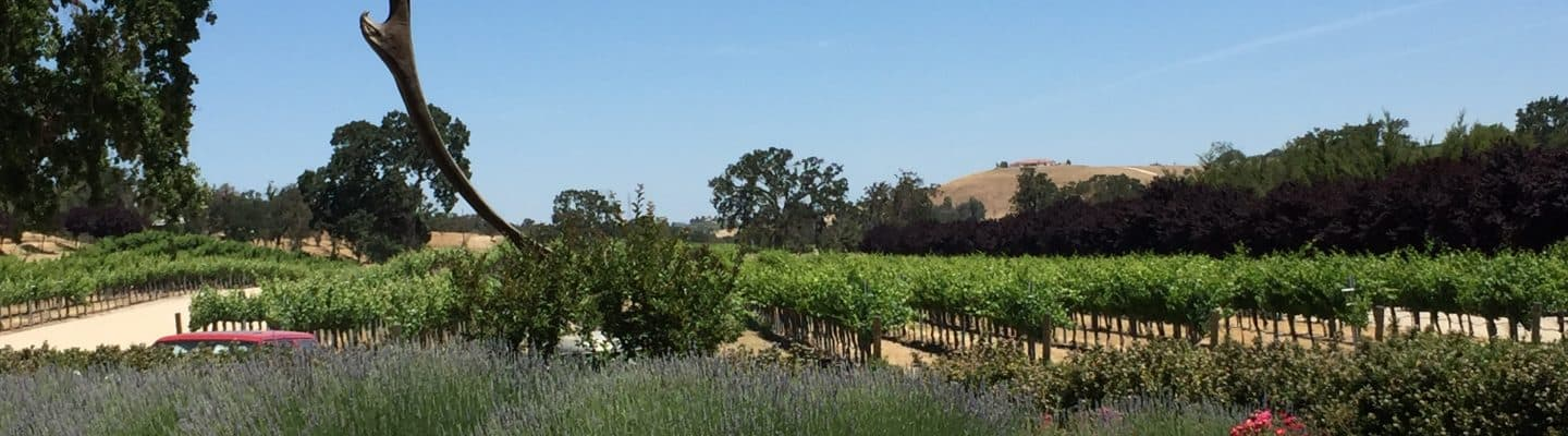sculpterra winery and vineyards