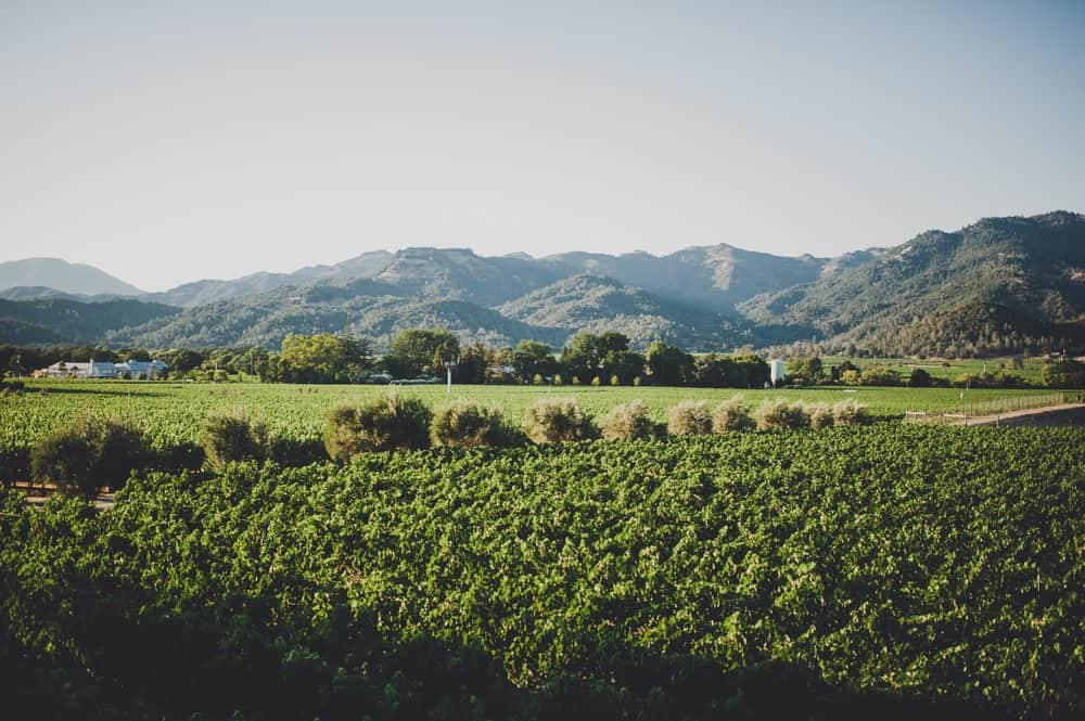 Madrigal Family Winery