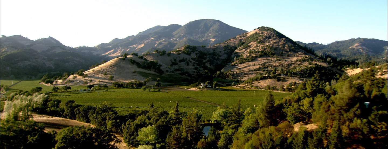 7d7e20e6da0 The 10 Best Napa Valley Wineries To Visit