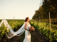 cottonwood for wedding article