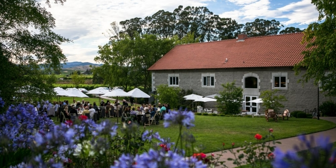 etude winery wine tasting