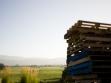 miner family wine napa crates and vineyard