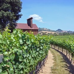 5 Tips for a can't miss wine country weekend