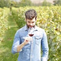 person tasting wine in vineyards