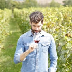 person tasting wine in vineyards