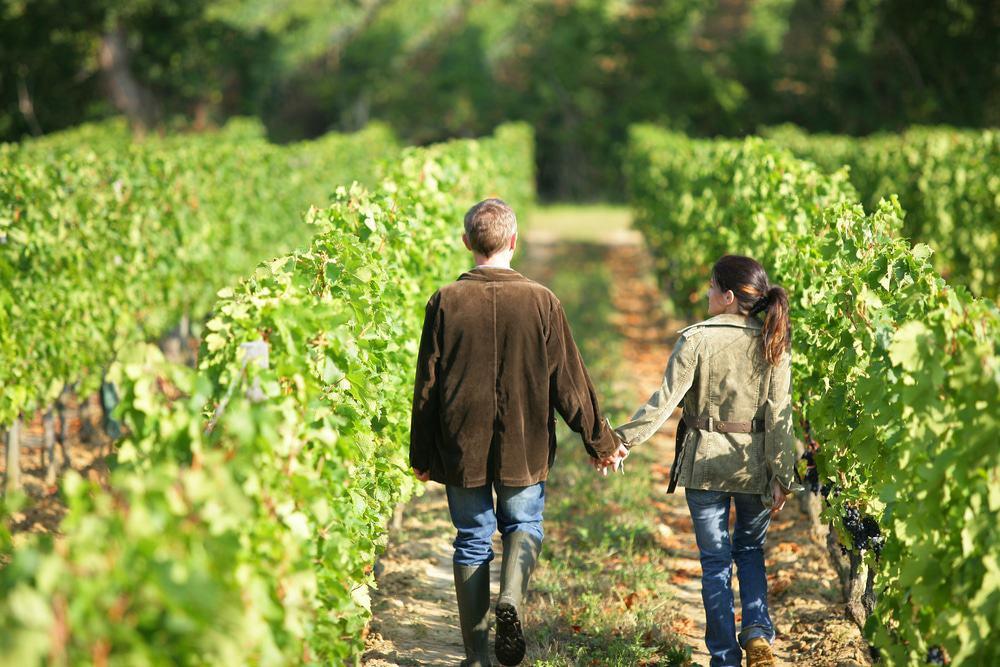 California Winery Wedding planning