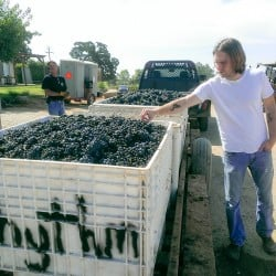Young Winemaker Profiles : Jasper Dickson
