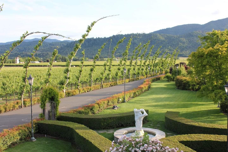 Peju province winery grounds