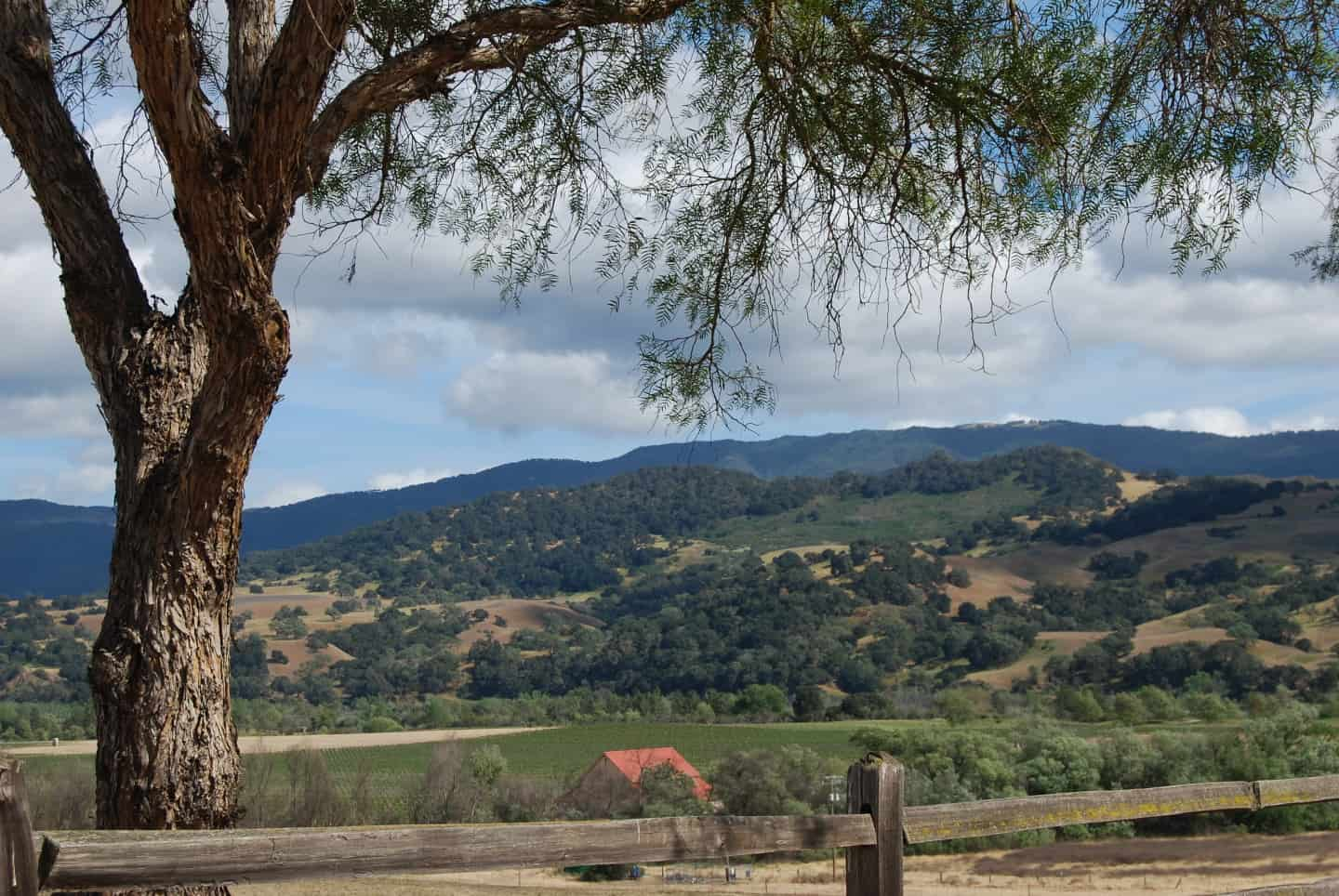view of santa barbara wine country from mission