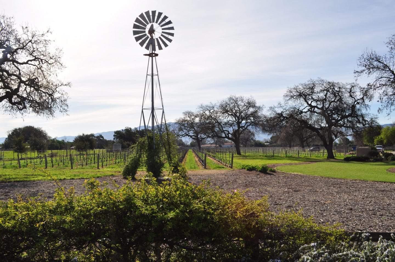 windmill on california vineyard