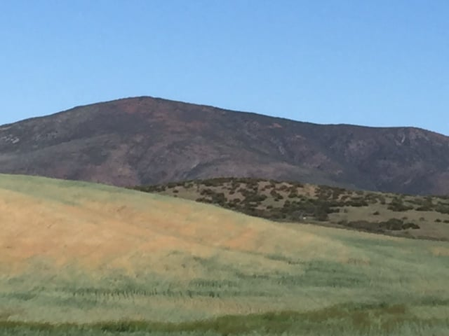 Rolling Hills in Temecula Wine Country