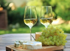 pairing wine tasting