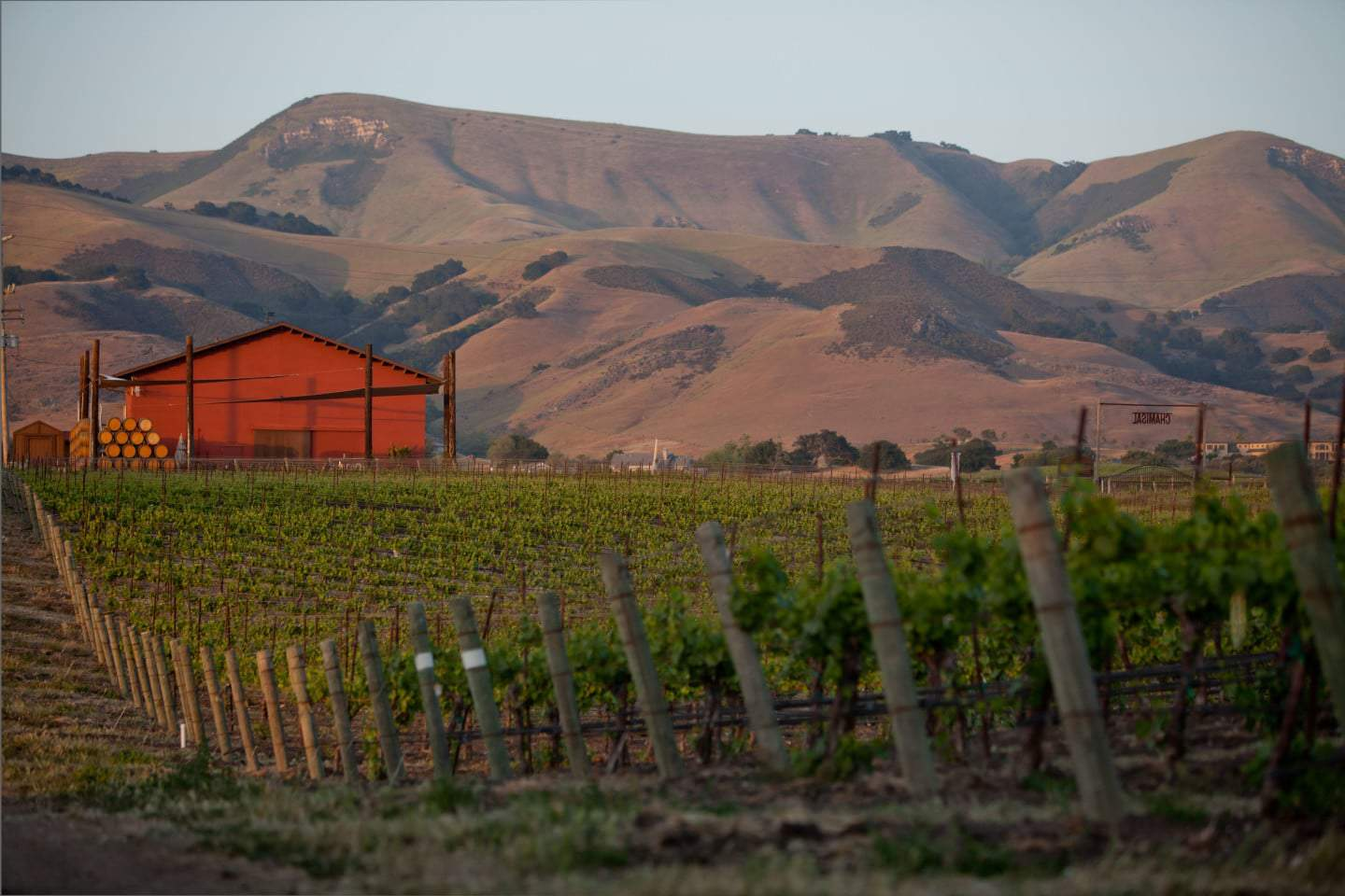 Edna Valley Wineries Hidden Gems Of The Central Coast