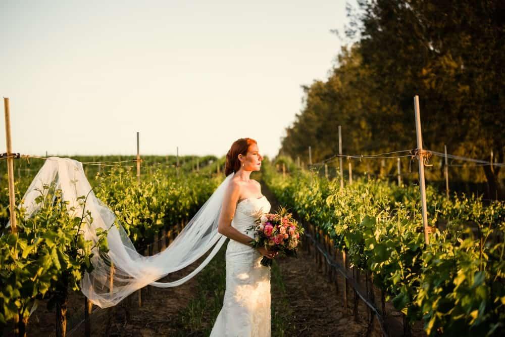 Cottonwood Canyon Winery Wedding