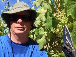 ray travieso winery
