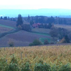winery oregon