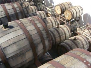 mount palomar barrels