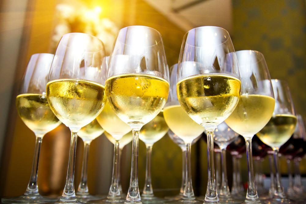 discount wine tasting white wine