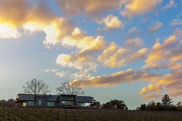 macrostie winery sonoma sky