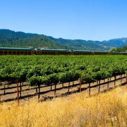 Napa Valley Wine Train Discount | Best Way to Save 2016 - 2017