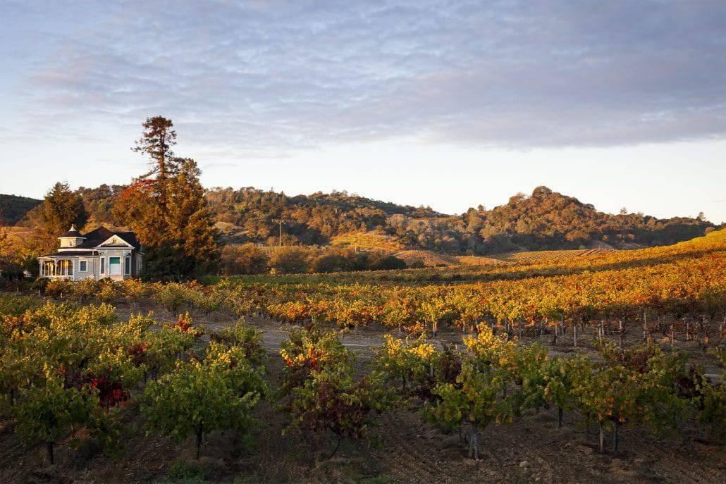 seghesio home vineyard hike