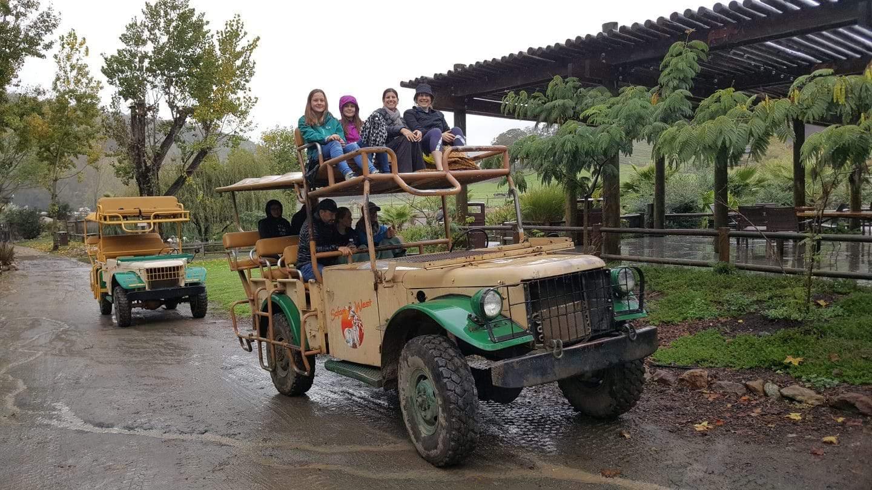 Safari West Jeep (1)