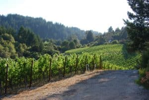 celebrity owned wineries california