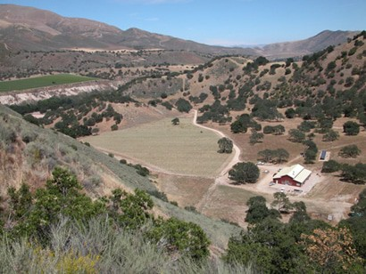 shale canyon vineyard monterey