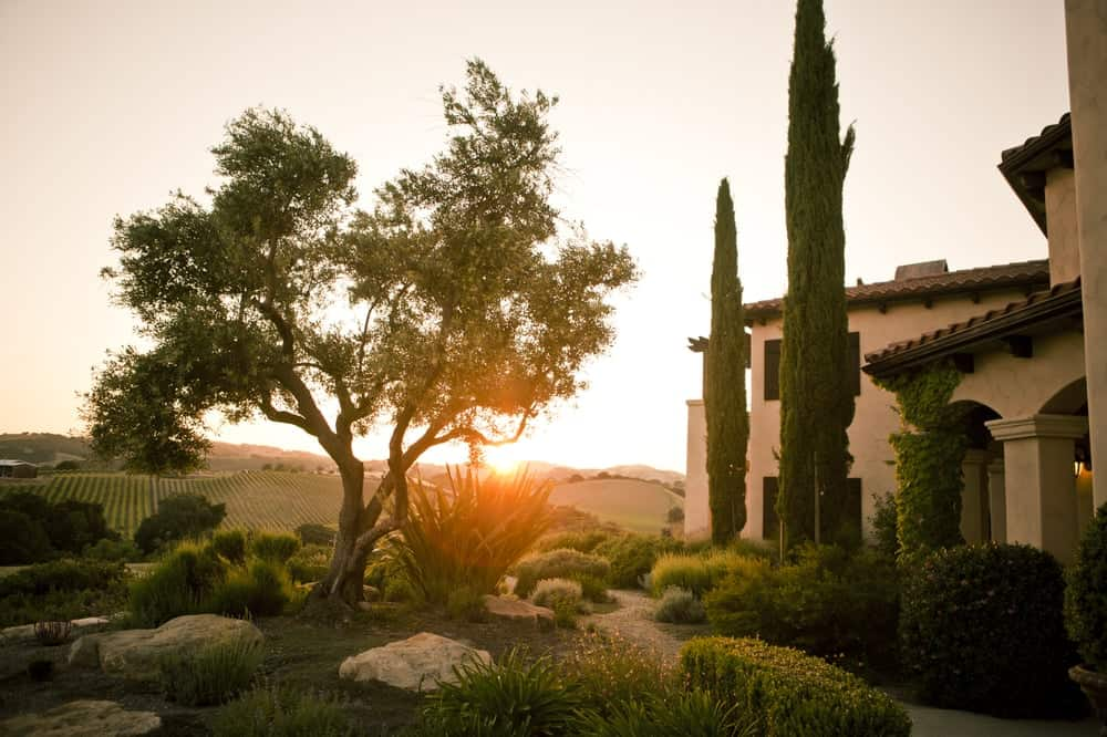 hotels near paso robles