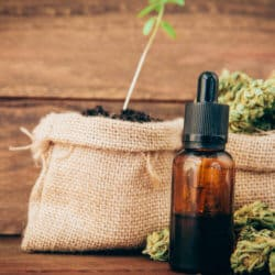 The 7 Best Places To Buy Cannabis Oil Online