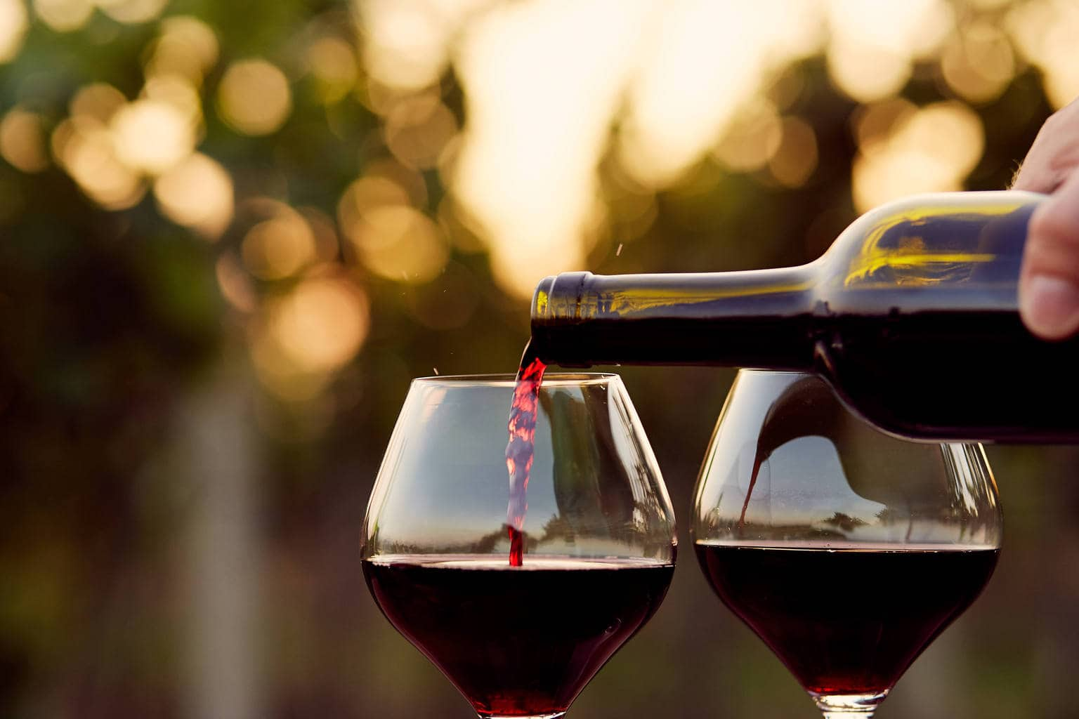 best wine glasses - Best Glass