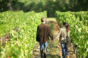 best napa vacation packages