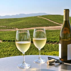Tips For Going Wine Tasting Safely