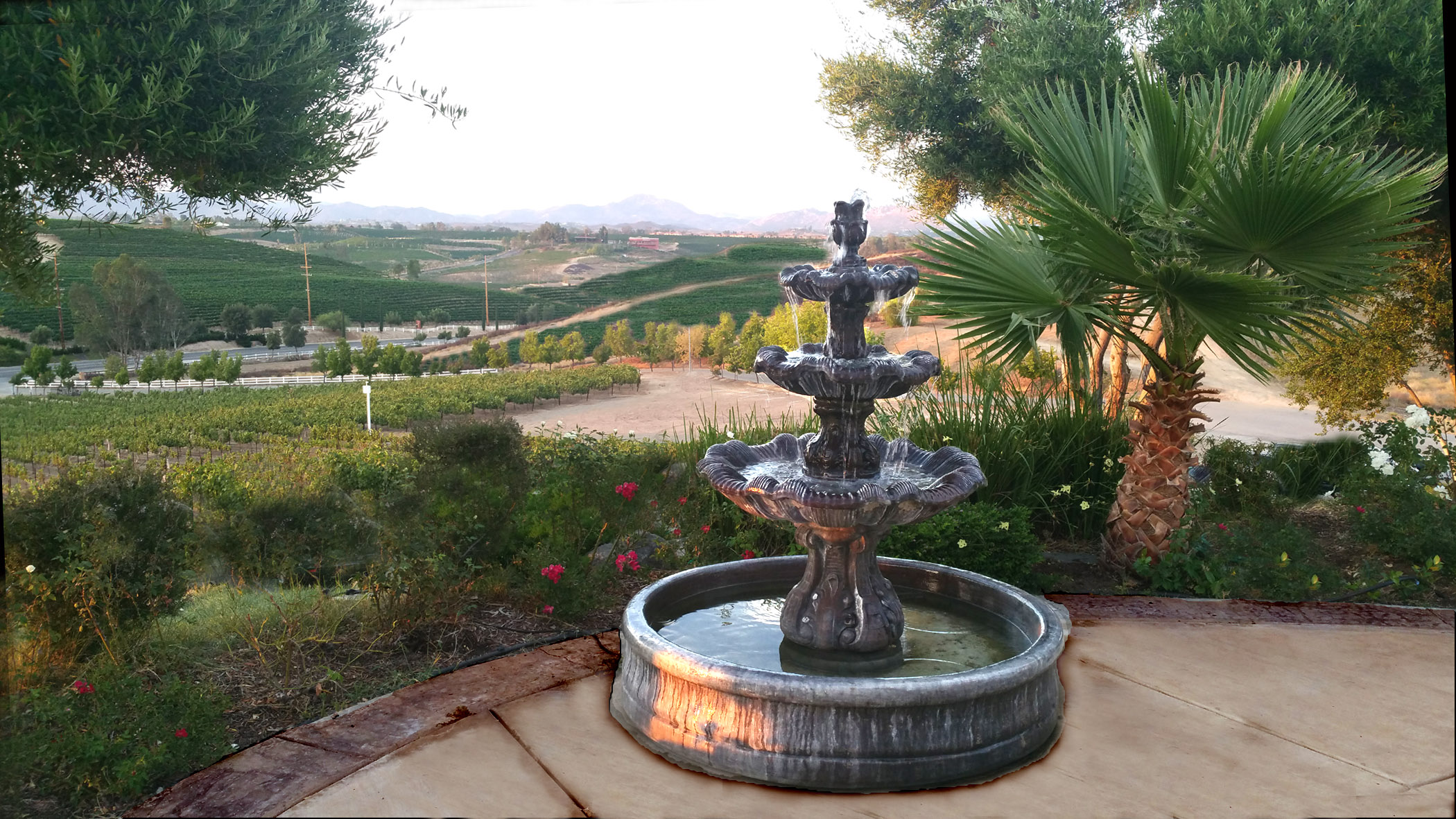 Fountain-Valley-View