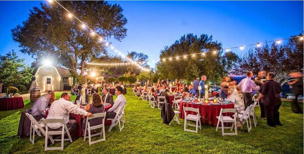 Reception-Dinner-Under-the-Lights